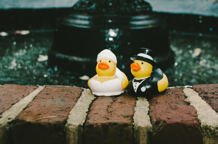 Rubber Ducky Bride  Groom