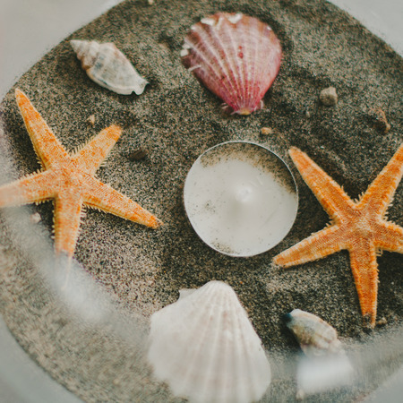 Sea Shell  Starfish Beach Decoration