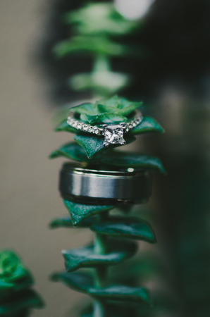 Wedding Rings on Green Leafy Plant