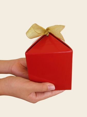 Boy holding a red gift with gold color ribbon Stock Photo - 6767248