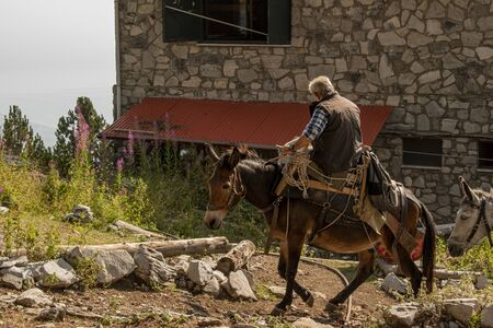 Man riding a donkey delivering supplies