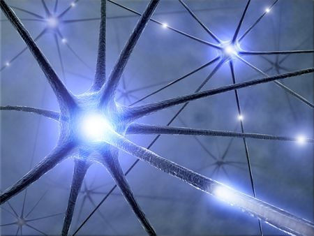 Neuron with complete structure for transmission of cellular signals Stock Photo