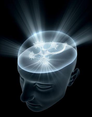 cognicion: Jefe de la revista Neuron