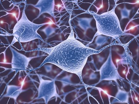 Neurons (The power of the mind) Stock Photo - 3789120