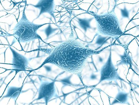 zenuwcel: Neuronen (De kracht van de geest)