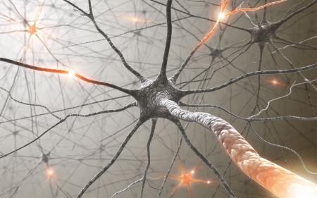 Neuronen Stockfoto