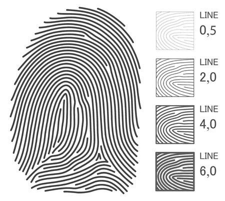 tu puedes: L�neas de vector de huella digital. Se puede cambiar a cualquier grosor. Todos los detalles de la huella digital fue hecha en l�nea. Vectores