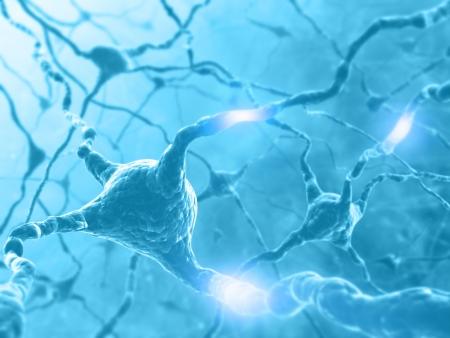 Dentro del cerebro. Concepto de las neuronas y sistema nervioso. Dos de las neuronas que transmite información.