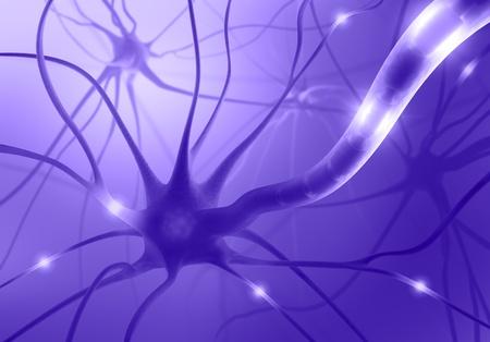 interconnected: Neuronas interconectadas transferir informaci�n con impulsos el�ctricos.