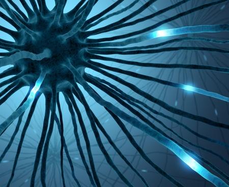 cellule nervose: Neuroni interconnessi trasferimento delle informazioni con impulsi elettrici.