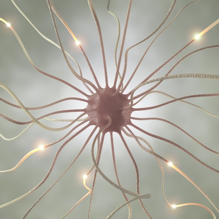 Interconnected neurons transferring information with electrical pulses. photo