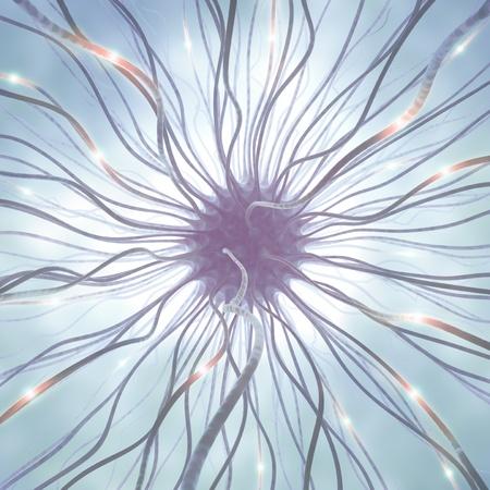 interconnected: Neuronas interconectadas transferencia de informaci�n con impulsos el�ctricos. Foto de archivo