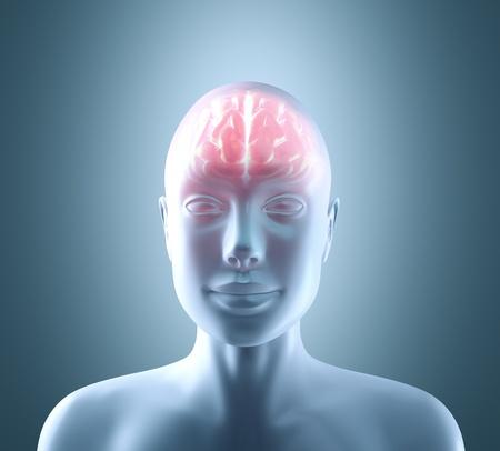 inteligencia emocional: Cerebro caliente en un cuerpo fr�o. Concepto de brainstorm, cyborg, inteligencia y tecnolog�a