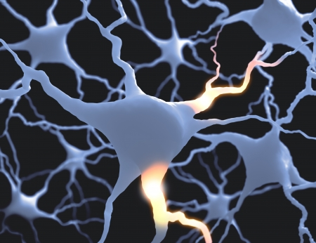 dendrite: Inside the brain. Concept of neurons and nervous system.
