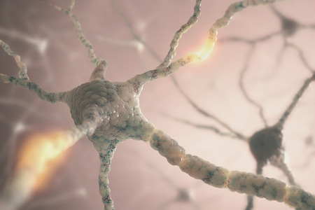 nerve: Image concept of neurons from the human brain.