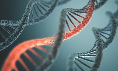 Larga estructura de la doble hélice del ADN en profundidad de vista. Foto de archivo
