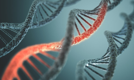 Long structure of the DNA double helix in depth of view. photo