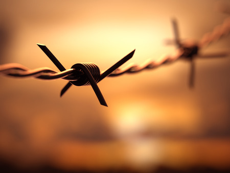 concentration camp: Barbed wire with depth of field with the sunset in the background. Stock Photo