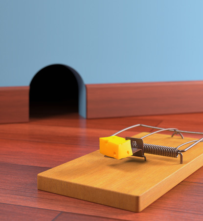 mouse hole: Mousetrap with cheese on a wooden floor. Depth of field in cheese. Stock Photo