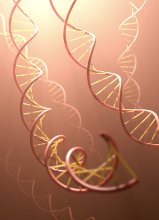 double helix: Long structure of the DNA double helix in depth of view.