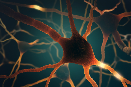 synaptic: Image concept of neurons interconnected in a complex brain network. Stock Photo