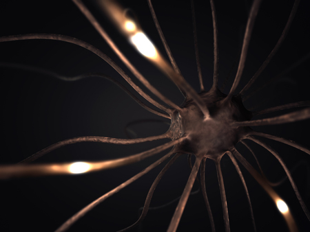 brainwaves: Image concept of neurons interconnected in a complex brain network. Stock Photo