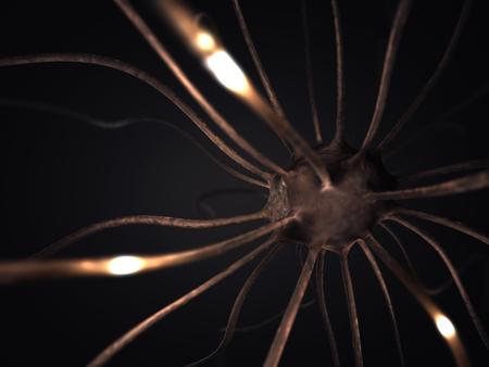 cognicion: Imagen concepto de neuronas interconectadas en una red cerebral compleja. Foto de archivo