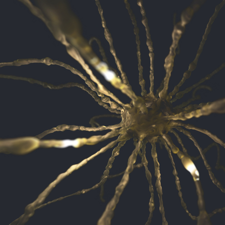 dendrite: Image concept of neurons interconnected in a complex brain network. Stock Photo