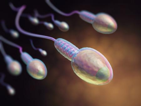 espermatozoides: Una gran cantidad de espermatozoides que van al óvulo. Concepto de la imagen de la fecundación. Profundidad de campo con enfoque en la cabeza de la primera espermatozoides. Foto de archivo