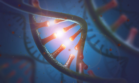 3D image concept of DNA and RNA molecules. Stock Photo - 59075491