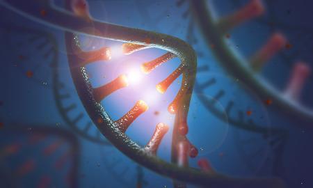 DNA および RNA の分子の 3 D イメージ コンセプト。