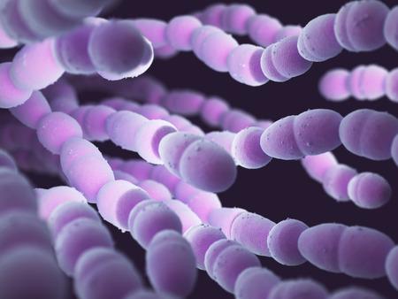 肺炎連鎖球菌や肺炎球菌、グラム陽性菌の肺炎球菌感染症の多くの種類の責任です。 写真素材