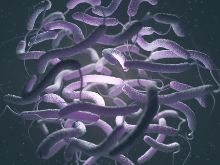 vibrio: Vibrio cholerae, Gram-negative bacteria. 3D illustration of bacteria with flagella.