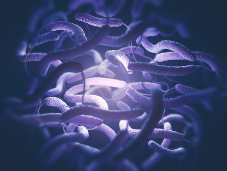 gram negative: Vibrio cholerae, Gram-negative bacteria. 3D illustration of bacteria with flagella.