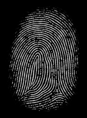 alpha: Black and white fingerprint in high definition and detailing. Good as mask or alpha channel.