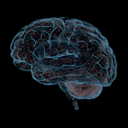 3D illustration. Human brain in a structure of polygonal connections representing the power of the mind.