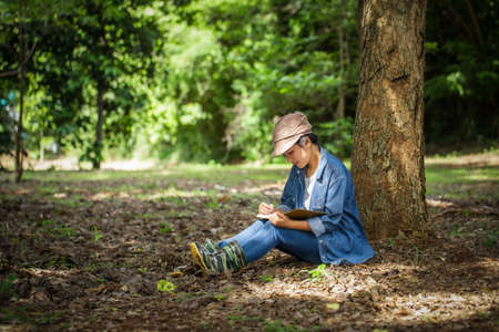 Botanists research sitting under trees are recording the changes nature in the forest. Zdjęcie Seryjne