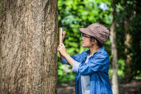 Female botanists are looking at the bark of trees to make notes for researches on the environment. Climate change and save the earth concept.