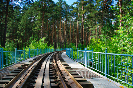forest railway: Railway in a forest in a summer sunny day