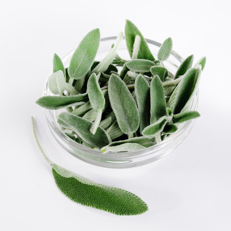 Pile of sage leaves in transparent glass bowl and lone leaf beside Stock Photo