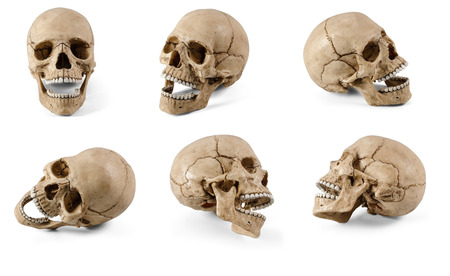 Six plastic human skulls with open jaws at various angles isolated on white background Stok Fotoğraf - 110061274