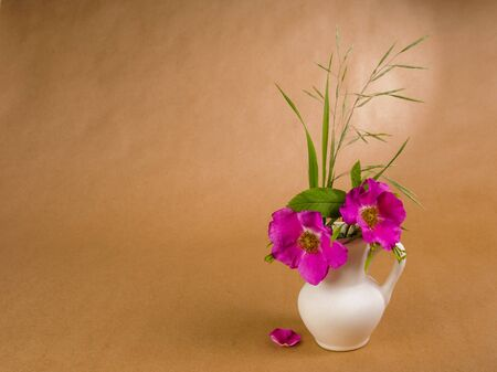 Two flowers and leaves of dog rose and some meadow grass in little white ceramic jug and lone doge rose petal located on the background of craft paper