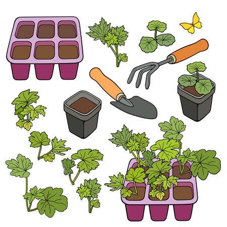 Set of garden cartoon hand drawn elements 矢量图像