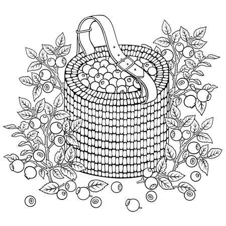 Blueberries in basket. Cartoon vector illustration Illusztráció
