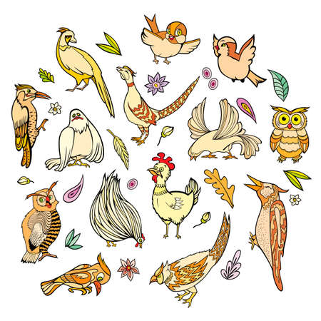 Hand drawn vector different birds set