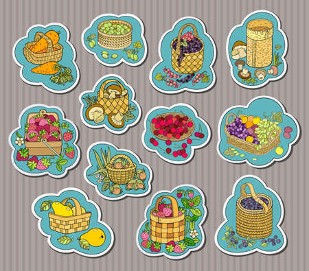 Funny hand drawn berries, fruits, vegetables in baskets