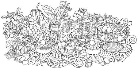 Fruits, berries, sweets hand drawn illustration