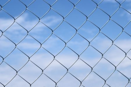 Grid Rabitz against the sky photo