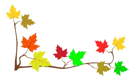 fall down: Frame from maple leaves