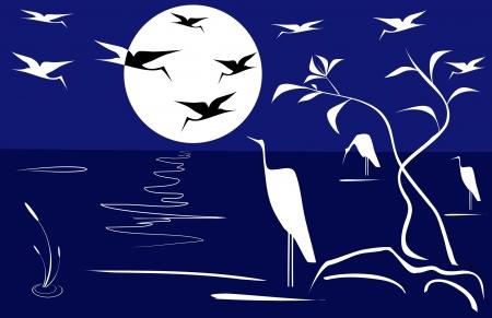 blue heron: Night landscape
